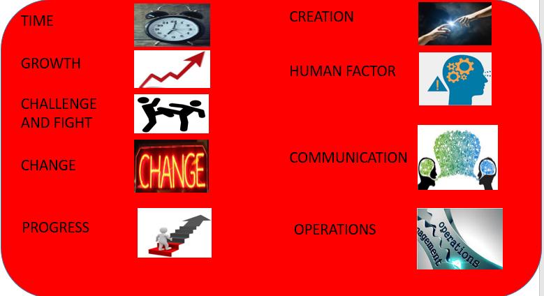 9 categories